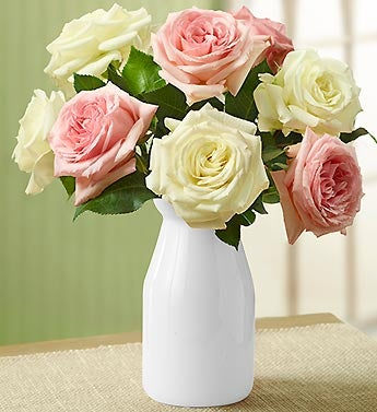 Pink & White Cottage Garden Roses