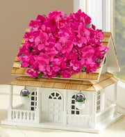 Birdhouse of Blooms� Deluxe