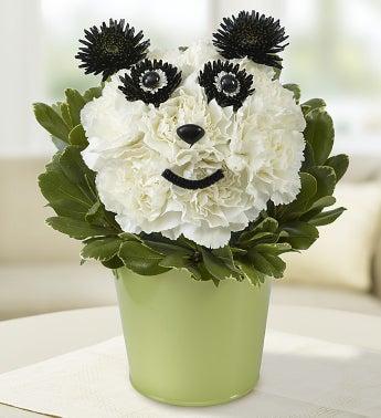 Panda Flower Pail?