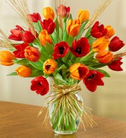 Timeless Tulips? for Fall