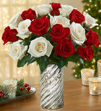 Peppermint Roses, 18 stems