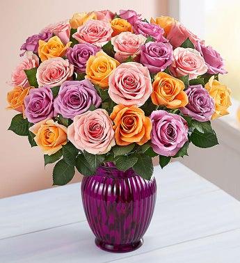 Sorbet Roses, 36 for $36