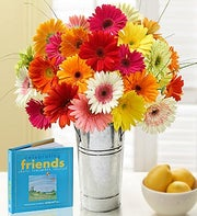 Gerbera Daisies with Celebrating Friends Book