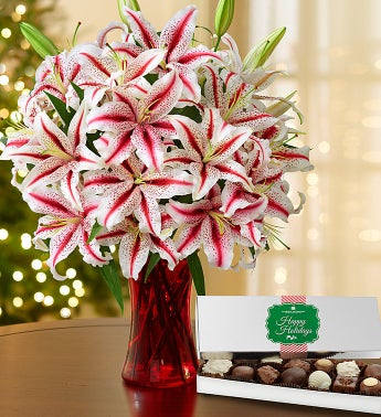 Candy Cane Lilies + Free Red Vase