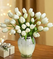 Winter White Tulips, 15-30 Stems