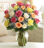 Two Dozen Premium Long Stem Assorted Roses