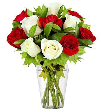 12 Radiant Roses