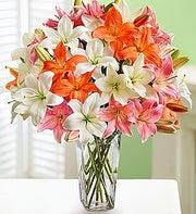 Vibrant Lily Bouquet