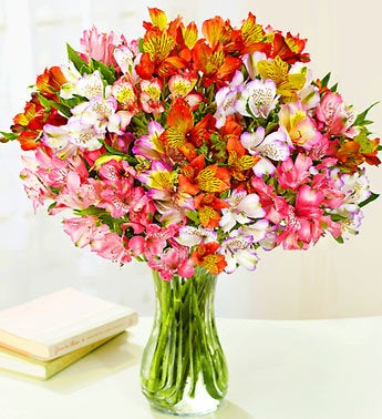 http://media4.1800flowers.com/800f_assets/images/flowers/images/shop/catalog/16193vz.jpg