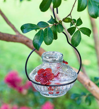 Hummingbird Feeder?Clear Pot