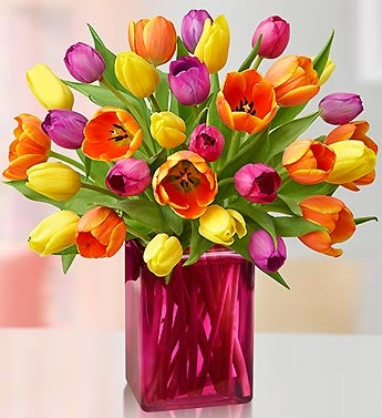Assorted Tulips, 30 for $30