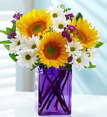 Sunflower Medley with Free Vase & Free Gift