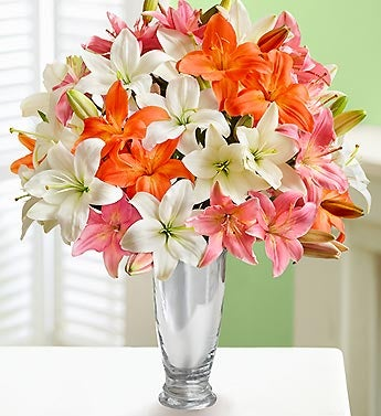 Vibrant Lily Bouquet, 25-50 Blooms