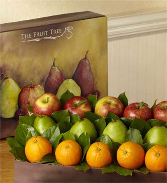 Fresh Fruit Box - 1800baskets.com