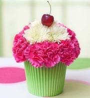 Cupcake in Bloom�