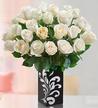 White Roses for Sympathy