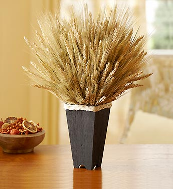 Elegant Wheat Container