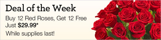 Red Roses, Buy 12, Get 12 Free