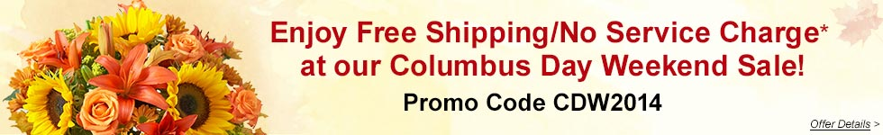 Free Shipping/No Service Charge