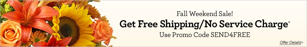 Fall Weekend Sale! - Get Free Shipping/No Service Charge