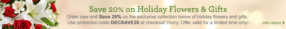 Save 20% on Holiday Flowers & Gifts