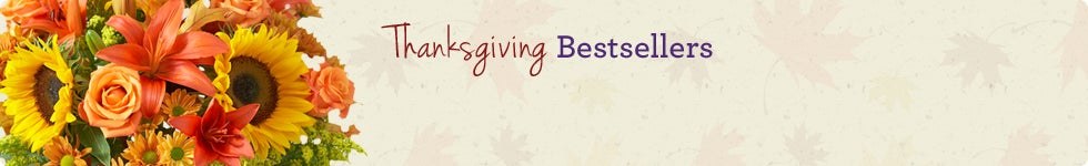 Thanksgiving Bestsellers